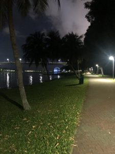 ランニングの風景。川沿い